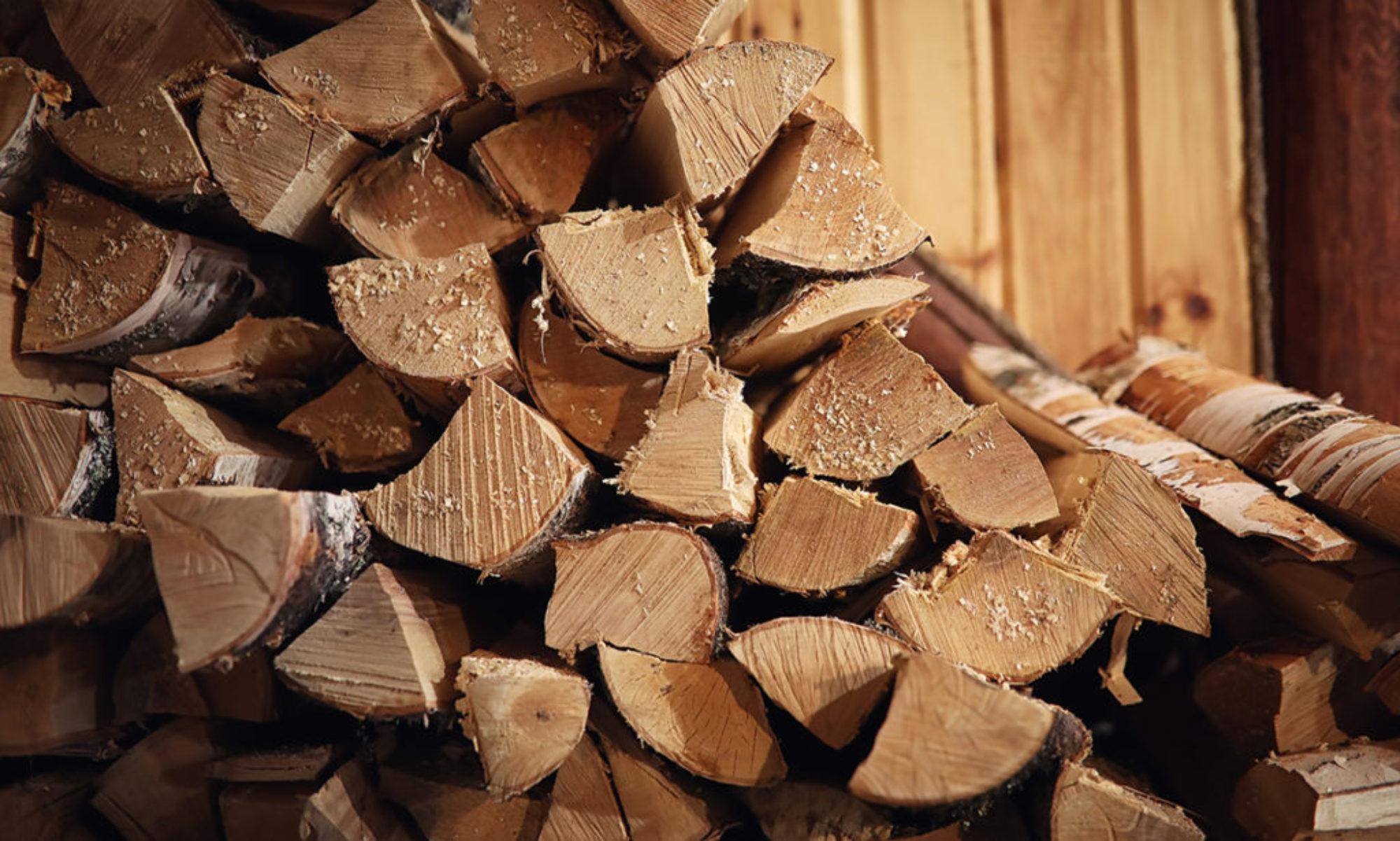 Výroba a prodej palivového dřeva spÁLOV